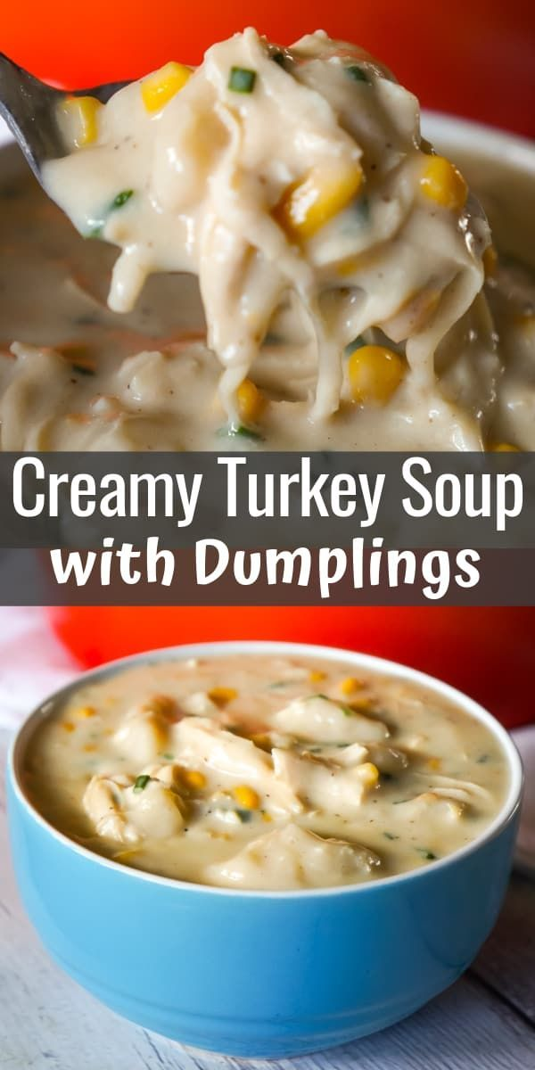 Creamy Turkey Soup with Dumplings - This is Not Diet Food