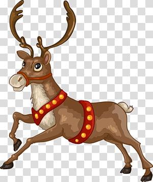 Santa Claus Reindeer Christmas Card Illustration Christmas Reindeer Transparent Background Png Clipa Reindeer Drawing Deer Cartoon Christmas Card Illustration