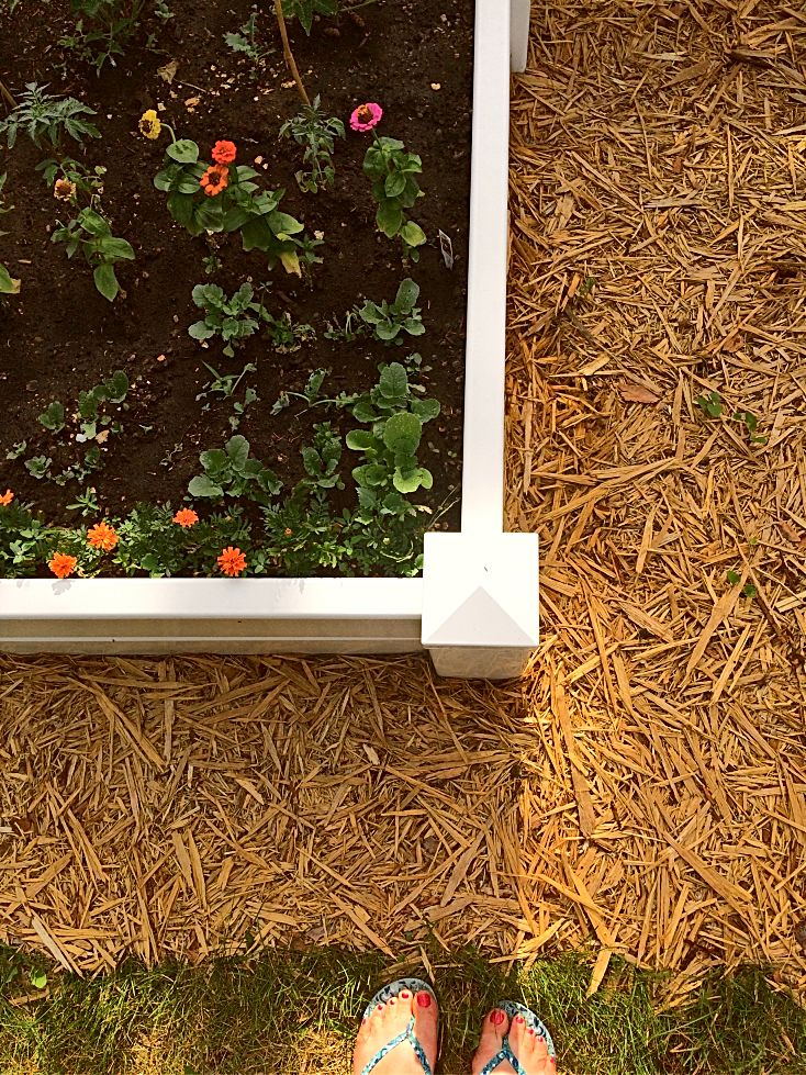 Mulching is a low maintenance way to get rid of grass and