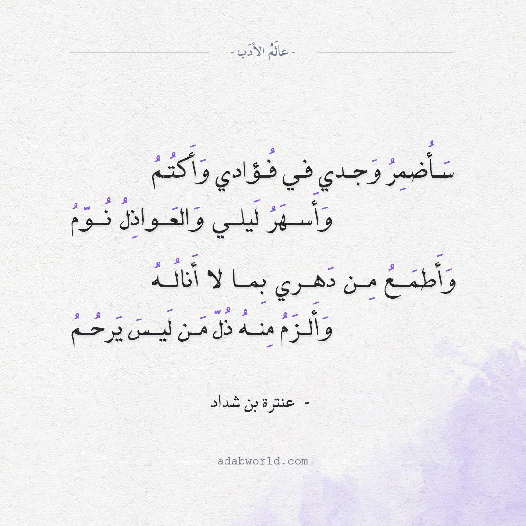 شعر عنترة بن شداد سأضمر وجدي في فؤادي وأكتم عالم الأدب Quotations Quotes Arabic Quotes