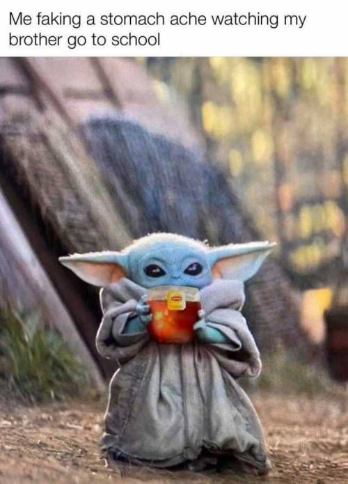 40 Of Today S Freshest Pics And Memes Yoda Meme Yoda Funny Star Wars Memes