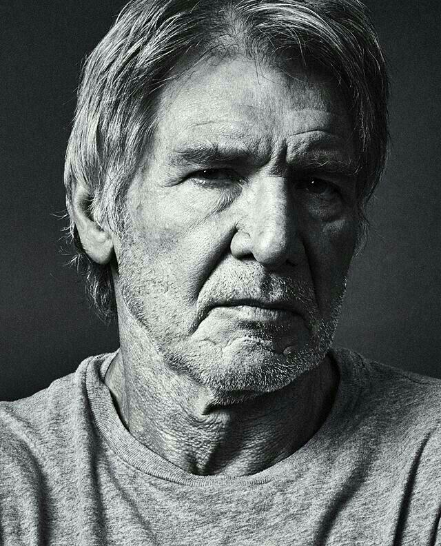 Harrison Ford Celebrity Portraits Actors Harrison Ford