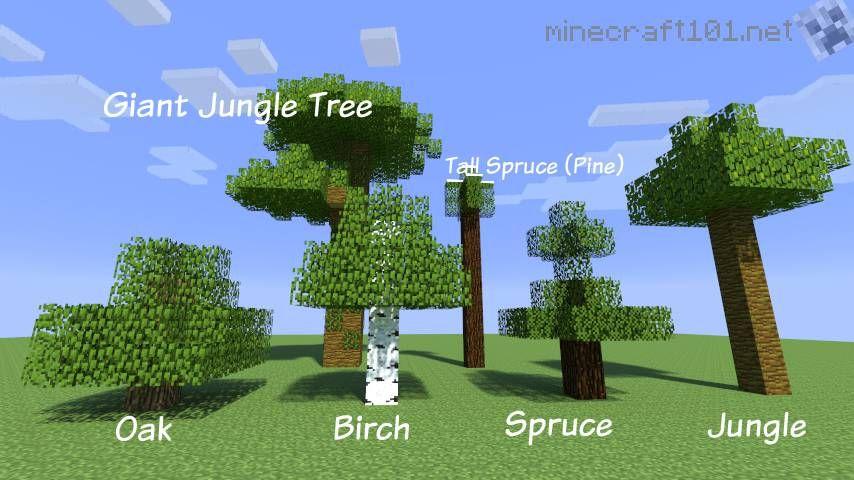 Farming Trees Minecraft 101 Minecraft Farm Minecraft Tree Tree