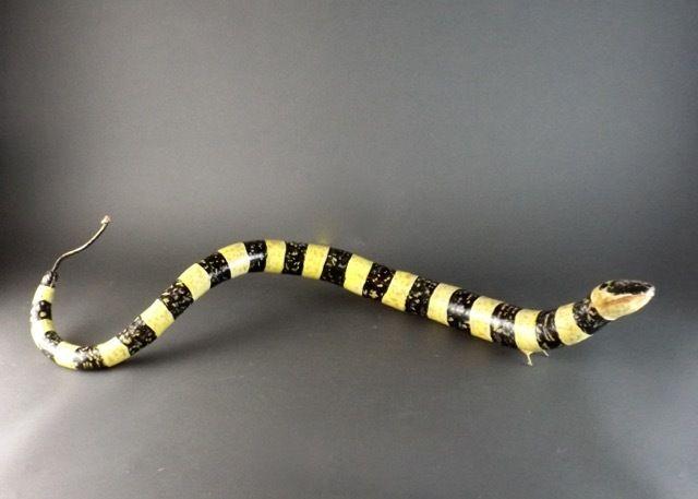 snake gourds - Pesquisa Google