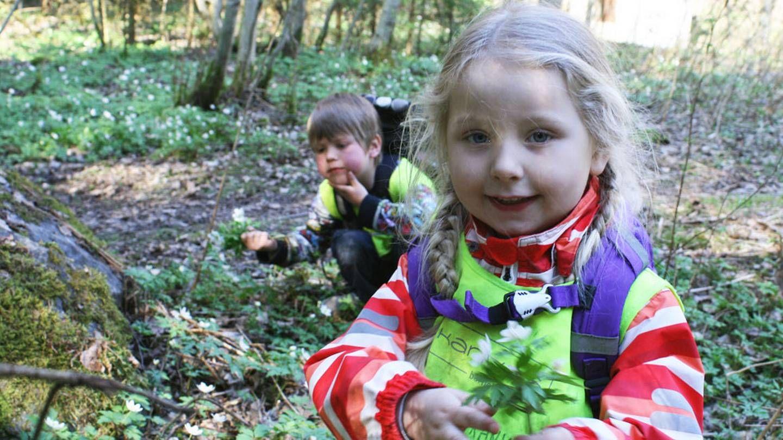 Forskere ser at norske barns kontakt med naturen avtar. I dag er det mye som er mer spennende enn å bygge hytte i skogen.