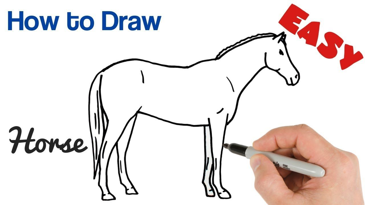 How to Draw a Horse Easy Step by Step Drawing | Step by ...