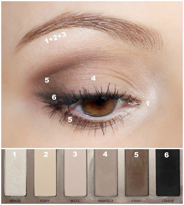 Eye Makeup Tutorial Diagram How To Apply Eyeshadow
