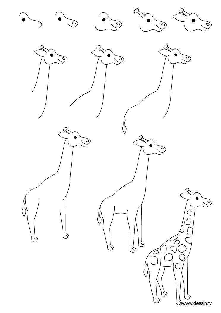 Dessin girafe dessins en 2019 - Dessiner des animaux facilement ...