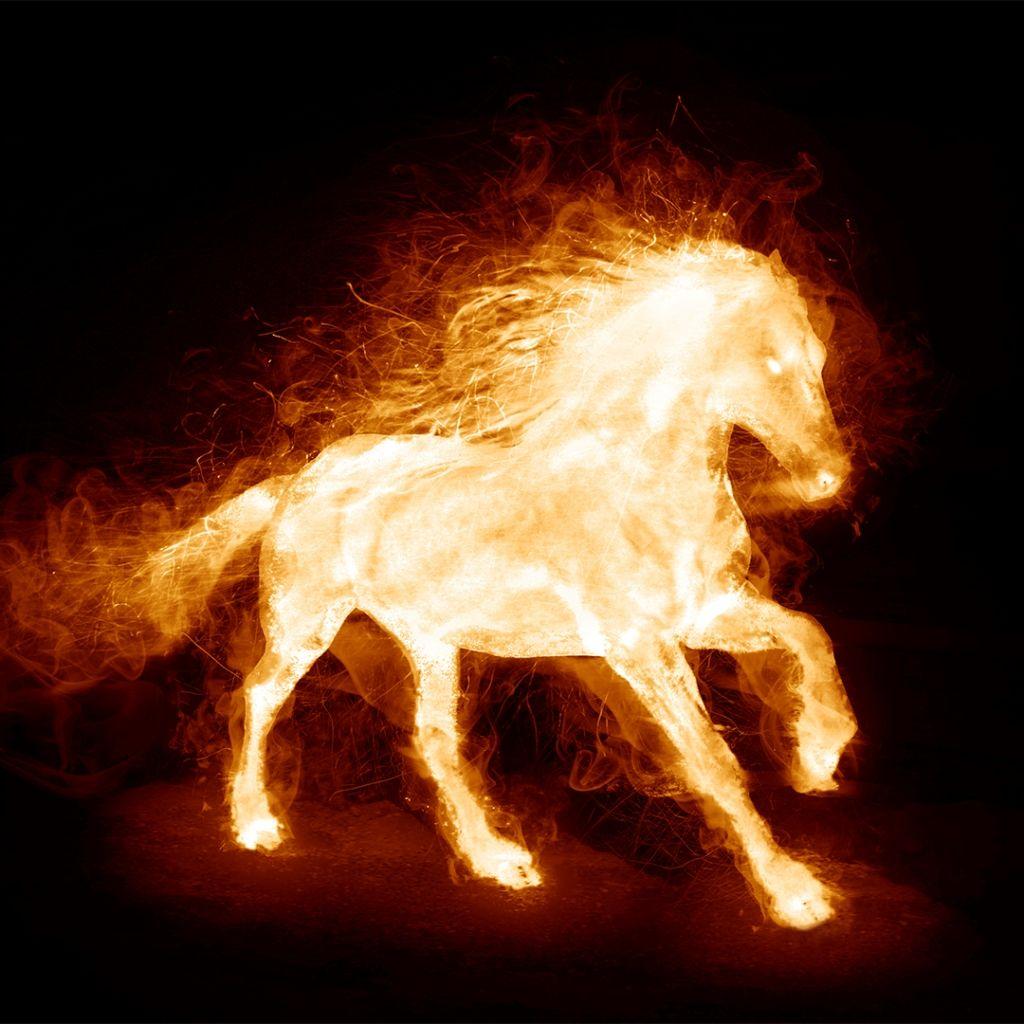 Fire Horse Horse Wallpaper Fire Horse Horse Animation