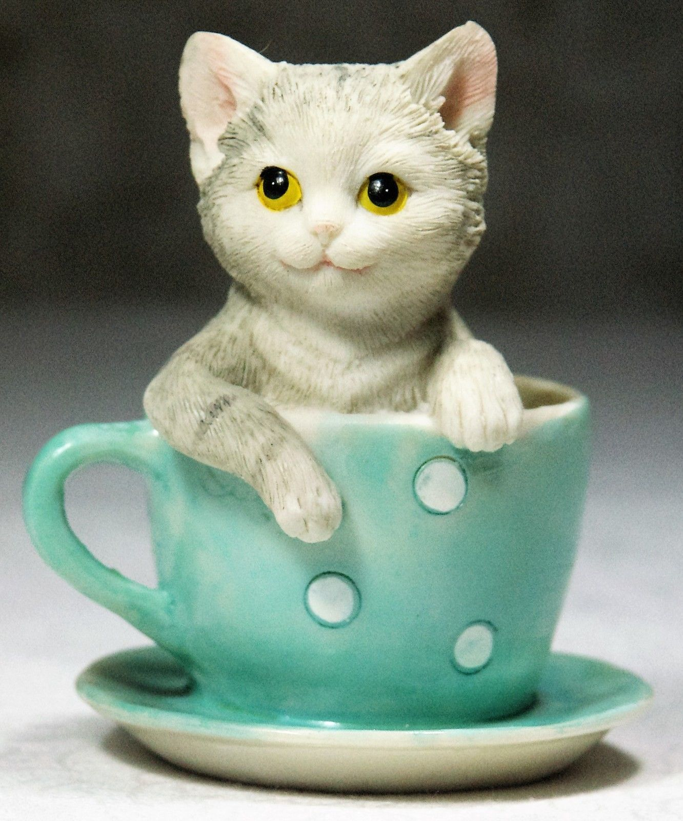 A cute Grey Tabby Kitten in an Aqua Tea Cup & Saucer