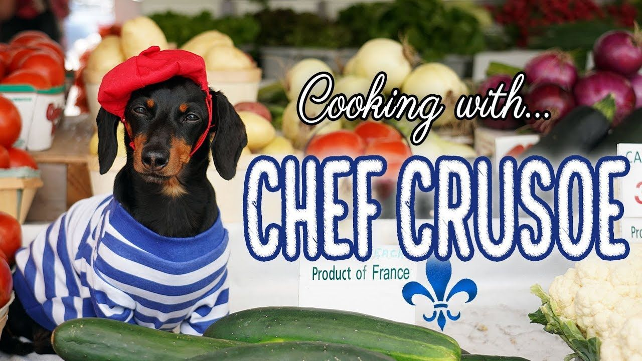 Ep 7 Chef Jacques Crusoe Funny Talking Dog Video, Chef
