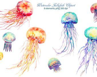 Watercolour Clipart Jellyfish Png Blue Aqua Purple And Orange Etsy Watercolor Clipart Jellyfish Art Clip Art