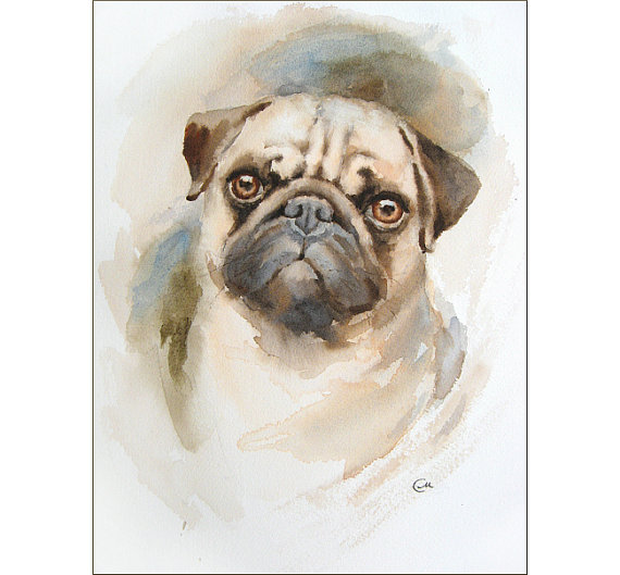 Watercolor Pug Portrait Original Painting 9x12 By Cmwatercolors