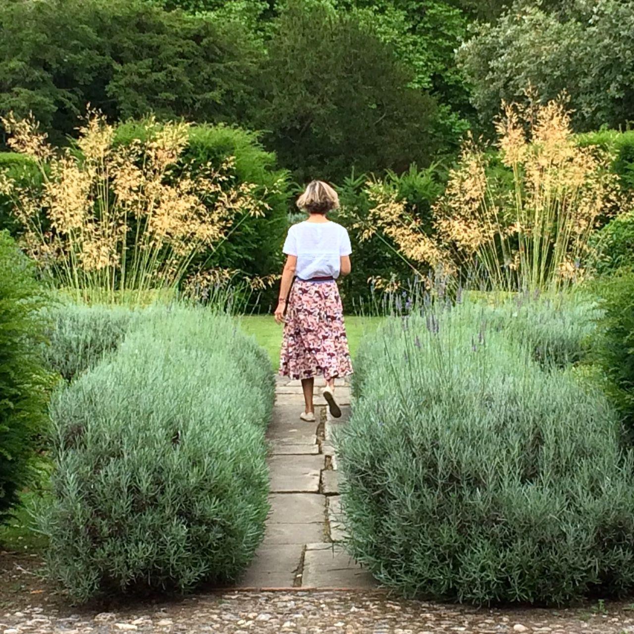 10 Plants For Courtyard Gardens Design | Interior Design Ideas on