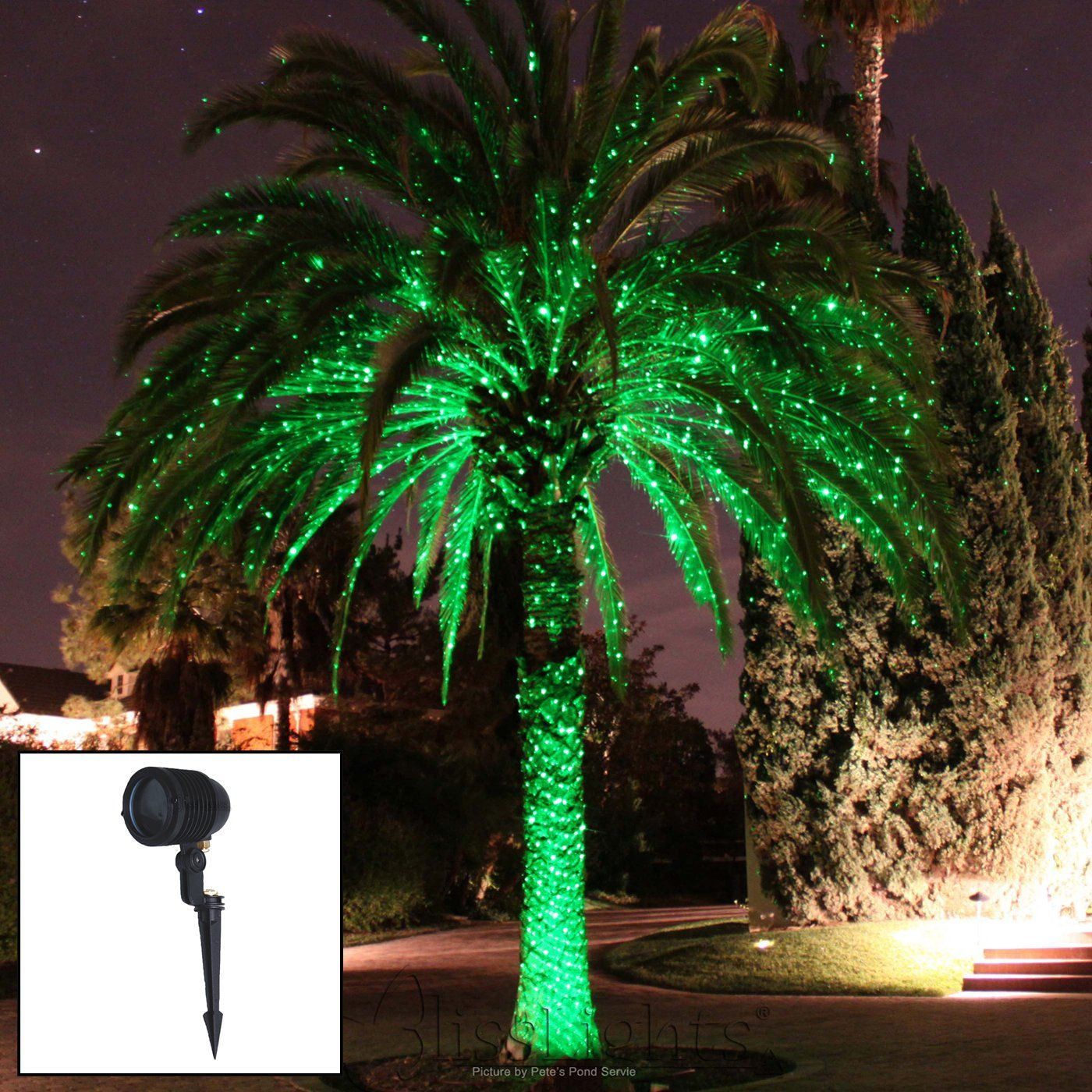 String Lights In Trees: Blisslights Spright-GWT BlissLight Green Landscape Laser