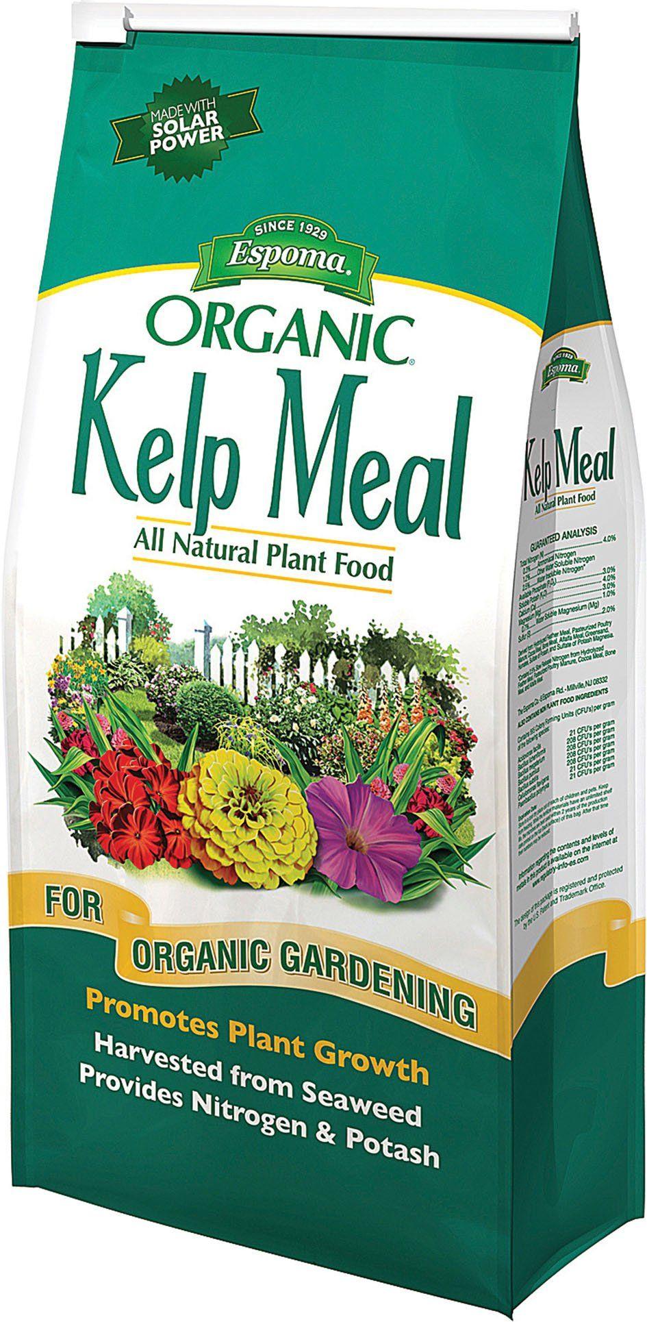 Espoma Company Organic Kelp Meal All Natural Plant Food 4 Pound