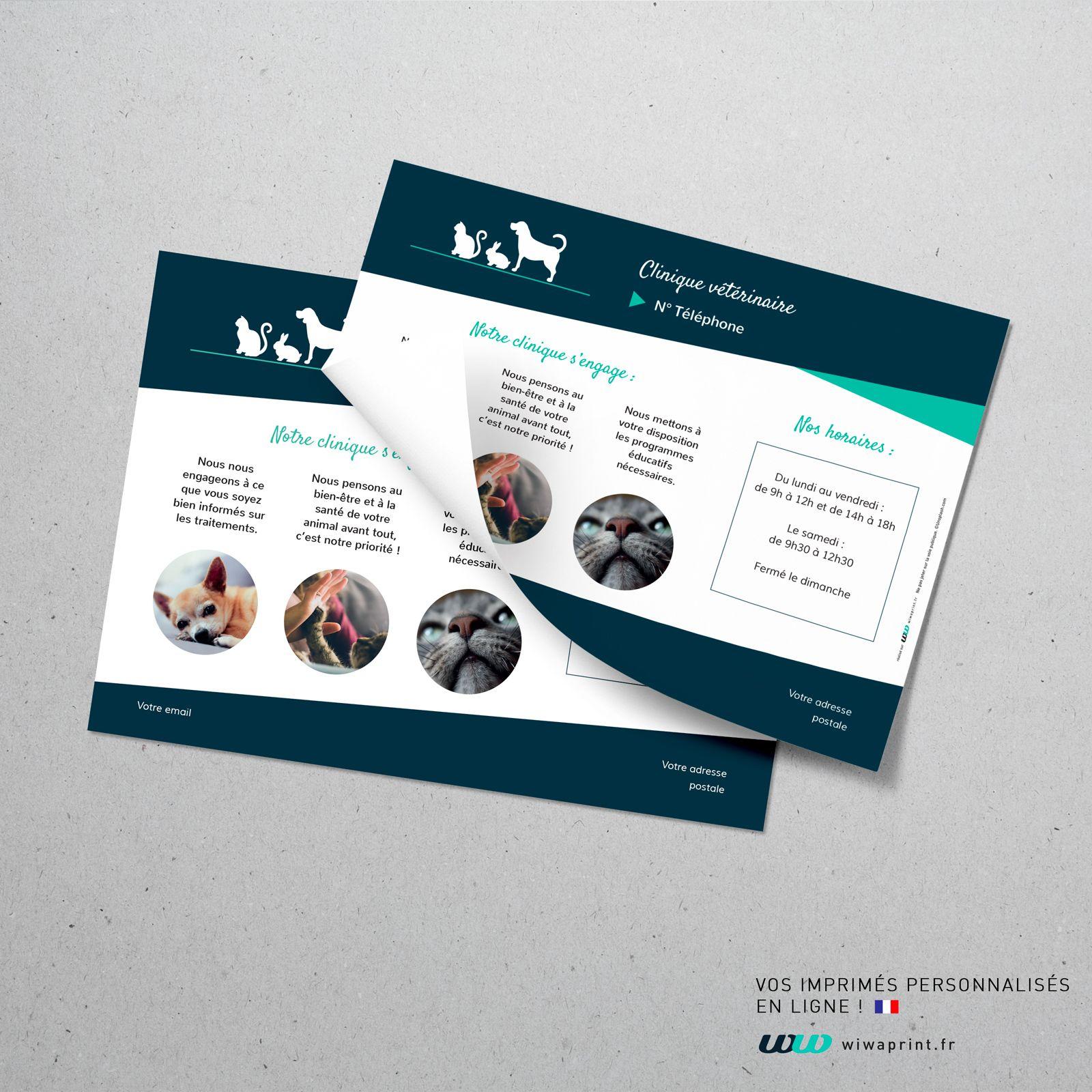 Flyer Vétérinaire Flyer Graphic Design Animaux Chiens Chats