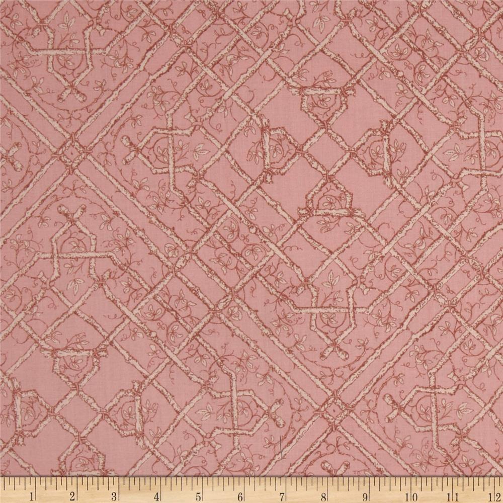 andover fabrics victorian modern | Victorian Modern Floral Vine Pink - Discount Designer Fabric - Fabric ...
