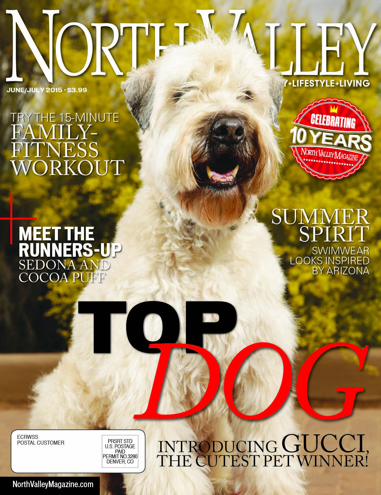 The June/July '15 issue of North Valley Magazine, produced by The Media Barr, Inc.