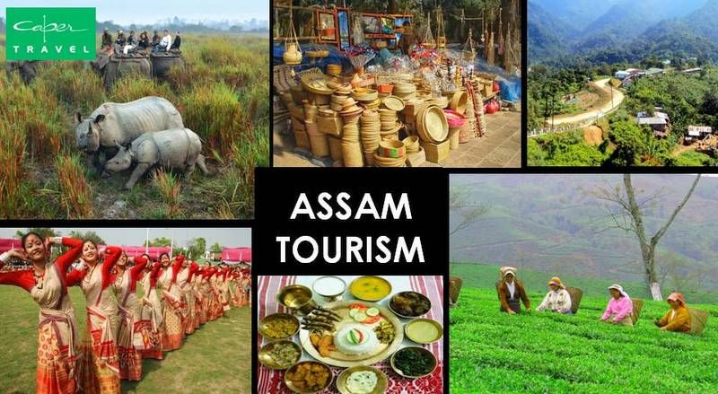 Pick Assam Tourism Discover A Splendid Spot Offering Wonderful