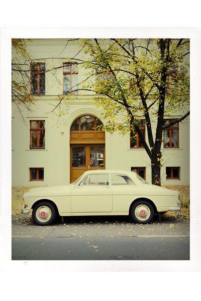 Volvo P121  Copyright: Katja Sonnewend