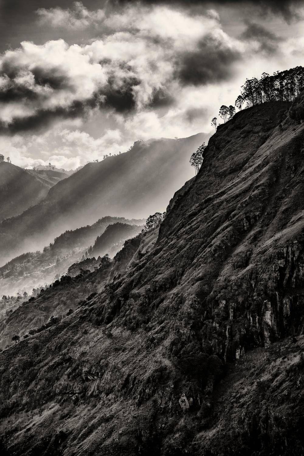 Lumiere De The Photo Noir Et Blanc Paysage Photo Noir Et Blanc Sri Lanka Photo Noir Et Blanc Paysage Photographie Artistique Paysage Paysage Noir Et Blanc