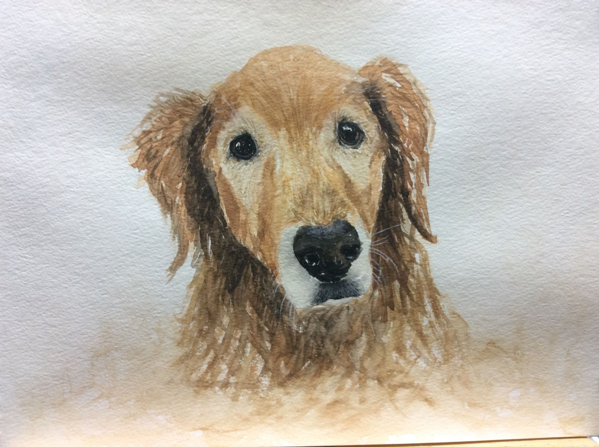 """""""Blue"""" Working out my grief as we said Goodbye to our sweet Golden Retriever."""