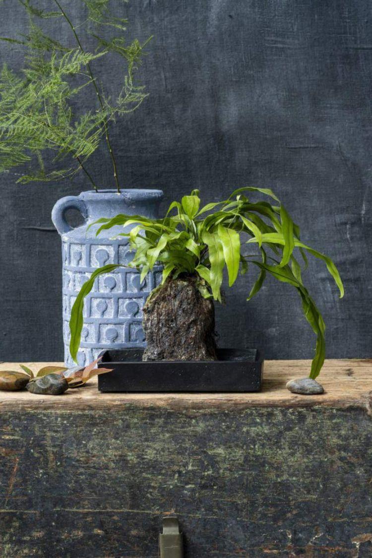 Pflanze Furs Badezimmer Waschbecken Kaufen Naturstein Waschbecken Natursteine
