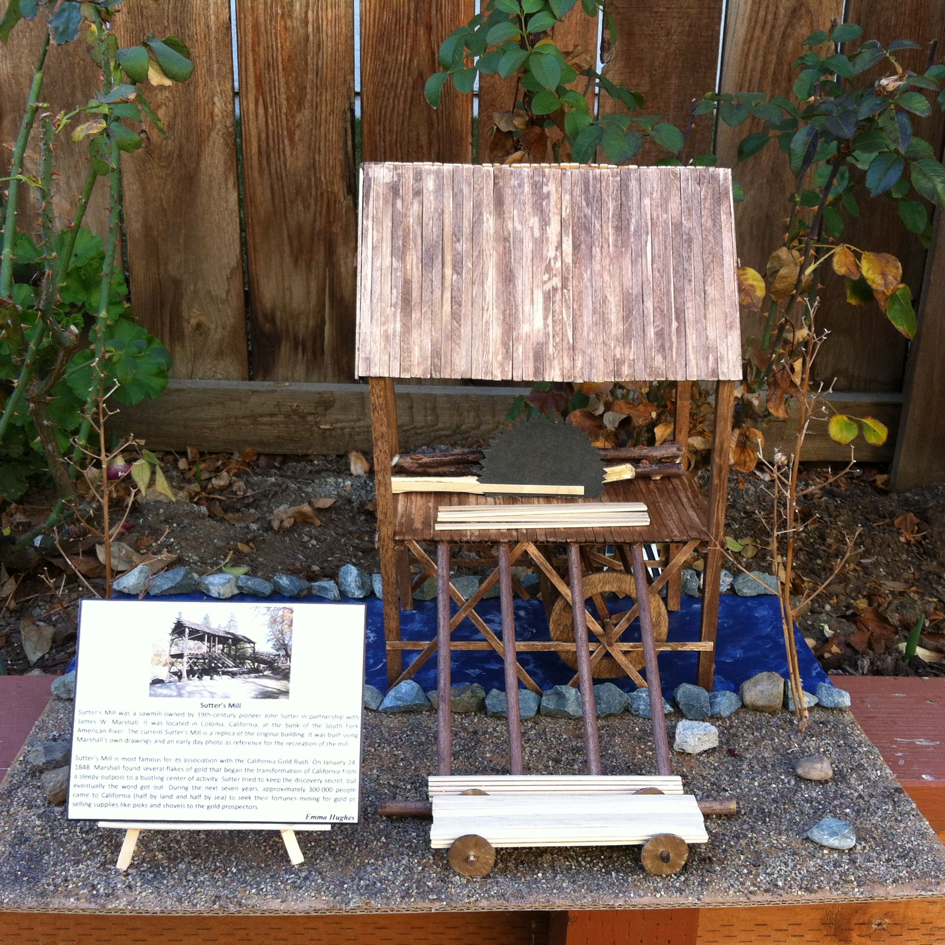 Sutter S Mill Project For 4th Graders