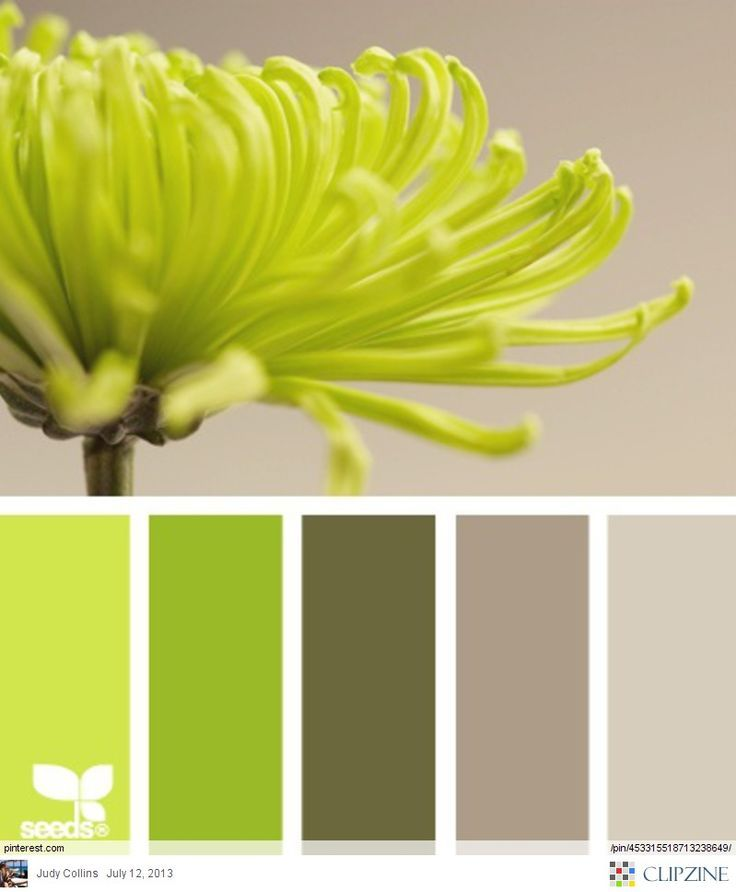 24 best Kitchen ideas images on Pinterest   Colors, Living room ...