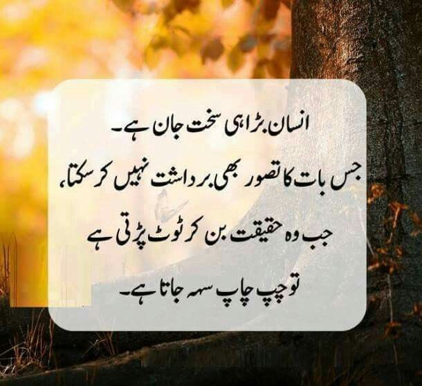 Very Short Funny Quotes About Life Urdu: Pin By Soomal Zulfiqar On Urdu
