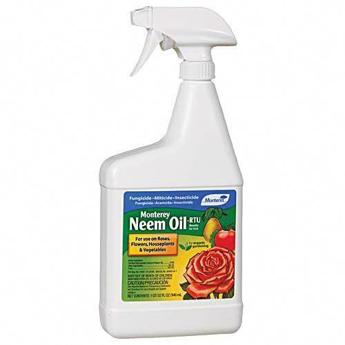 70% Neem Oil Insecticide, Miticide And Fungicide