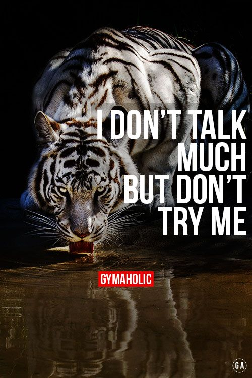 Tiger Quotes Stunning I Don't Talk Much But Don't Try Me The More You Talk The Less You