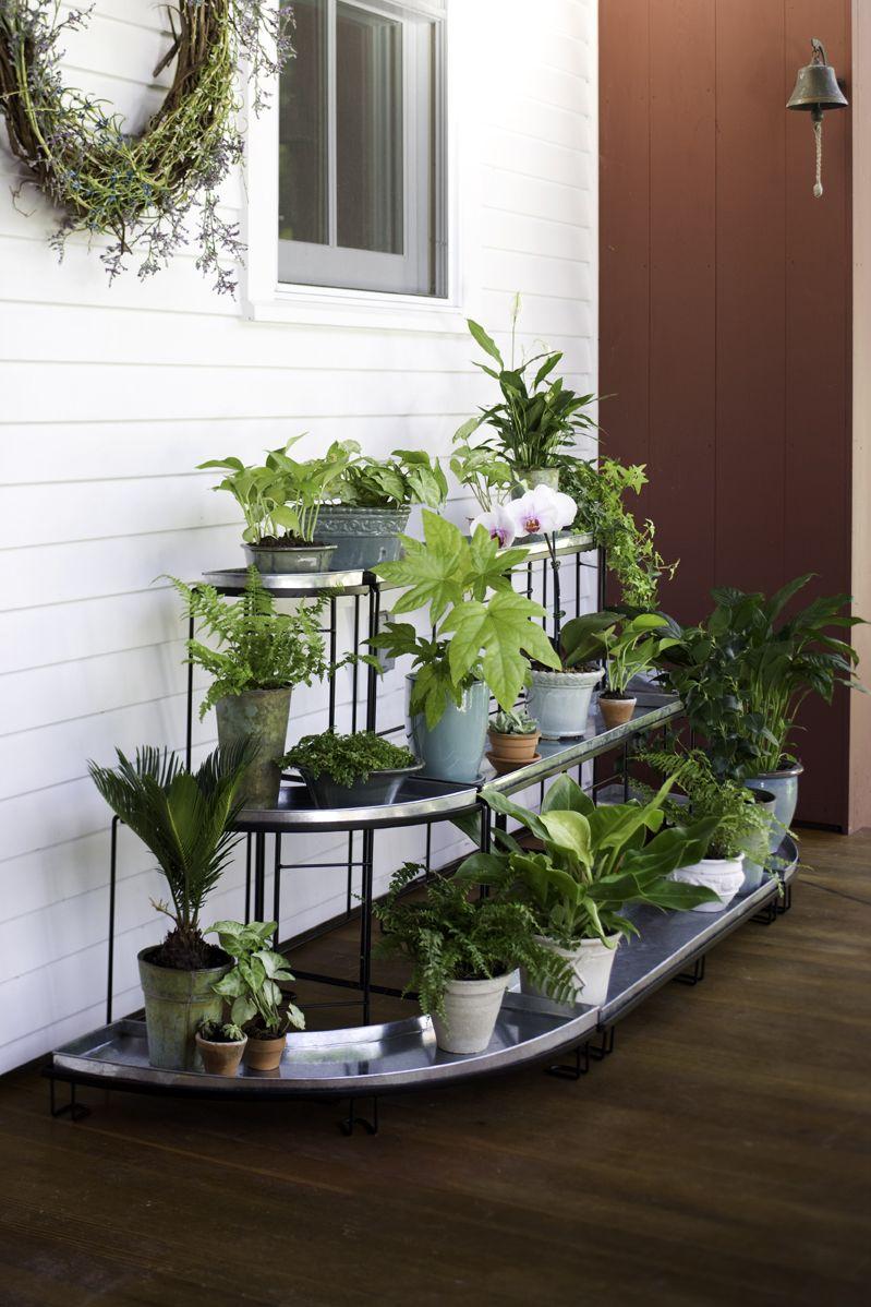 Esschert Corner Folding Etagere Plant Stand | Gardeners.com