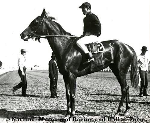 Exhibition Park Horse Racing