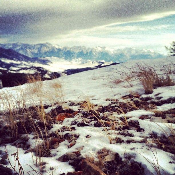 Fun Hike In The Backyard- Goose Creek Trail- Bozeman, MT