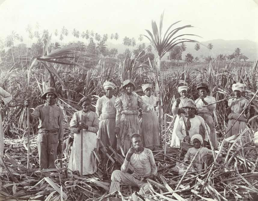 Jamaica as it used to be | Jamaica history, Jamaican art