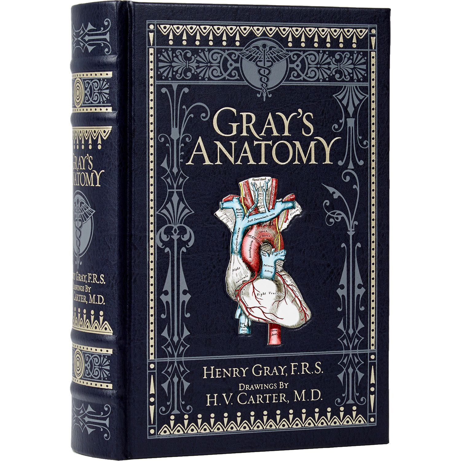 Henry Gray Gray S Anatomy Collectible Edition Tk Maxx Livros