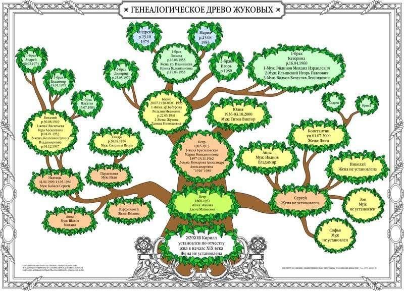 Образец генеалогического древа семьи для заполнения