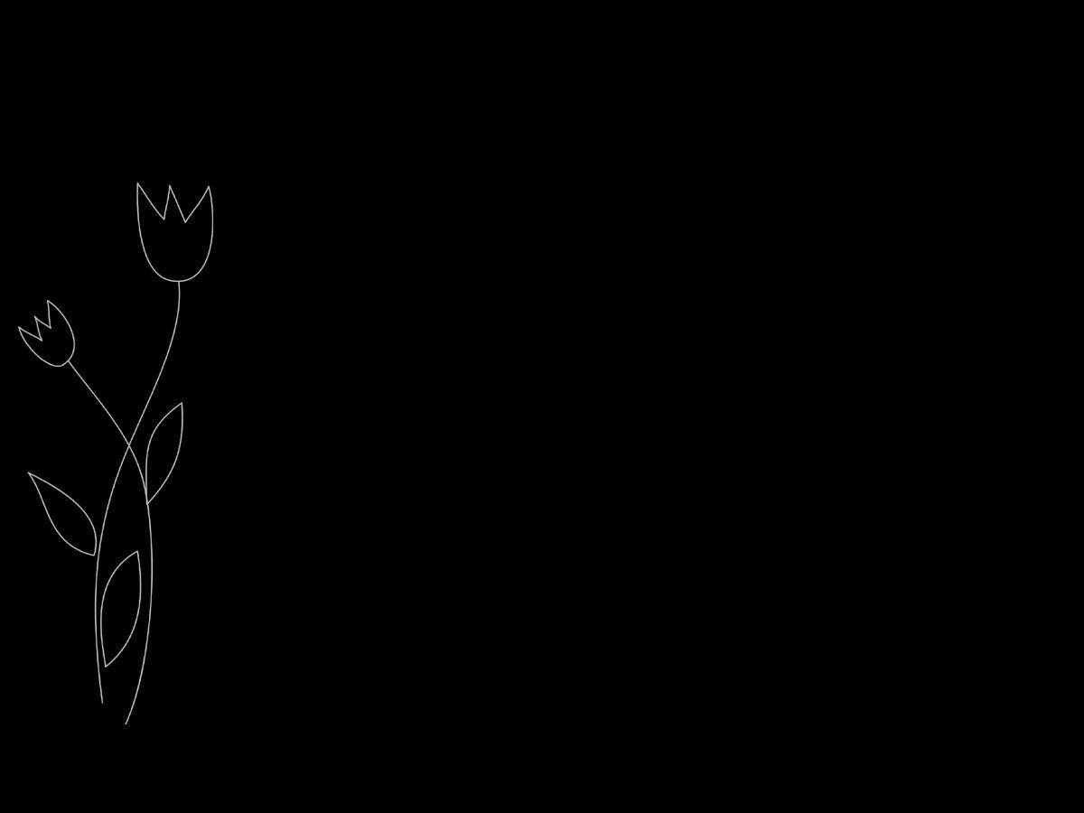 Lavable 180 * 180 cm impresi/ón 3D HD 12 Ganchos Accesorios de ba/ño JYEJYRTEJ Flor Diente de le/ón Blanco Negro Fondo Cortina de ba/ño Secado r/ápido