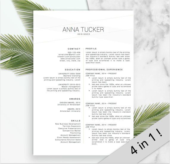 Modern Resume Template / CV Template Professional and Creative - download word resume template