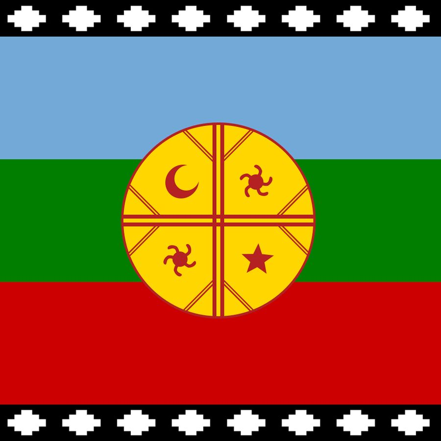 Flag Of Mapuche Carry All Pouch By Oldking Small 6 X 5 In 2020 Acrylic Box Art Prints Good Advice For Life