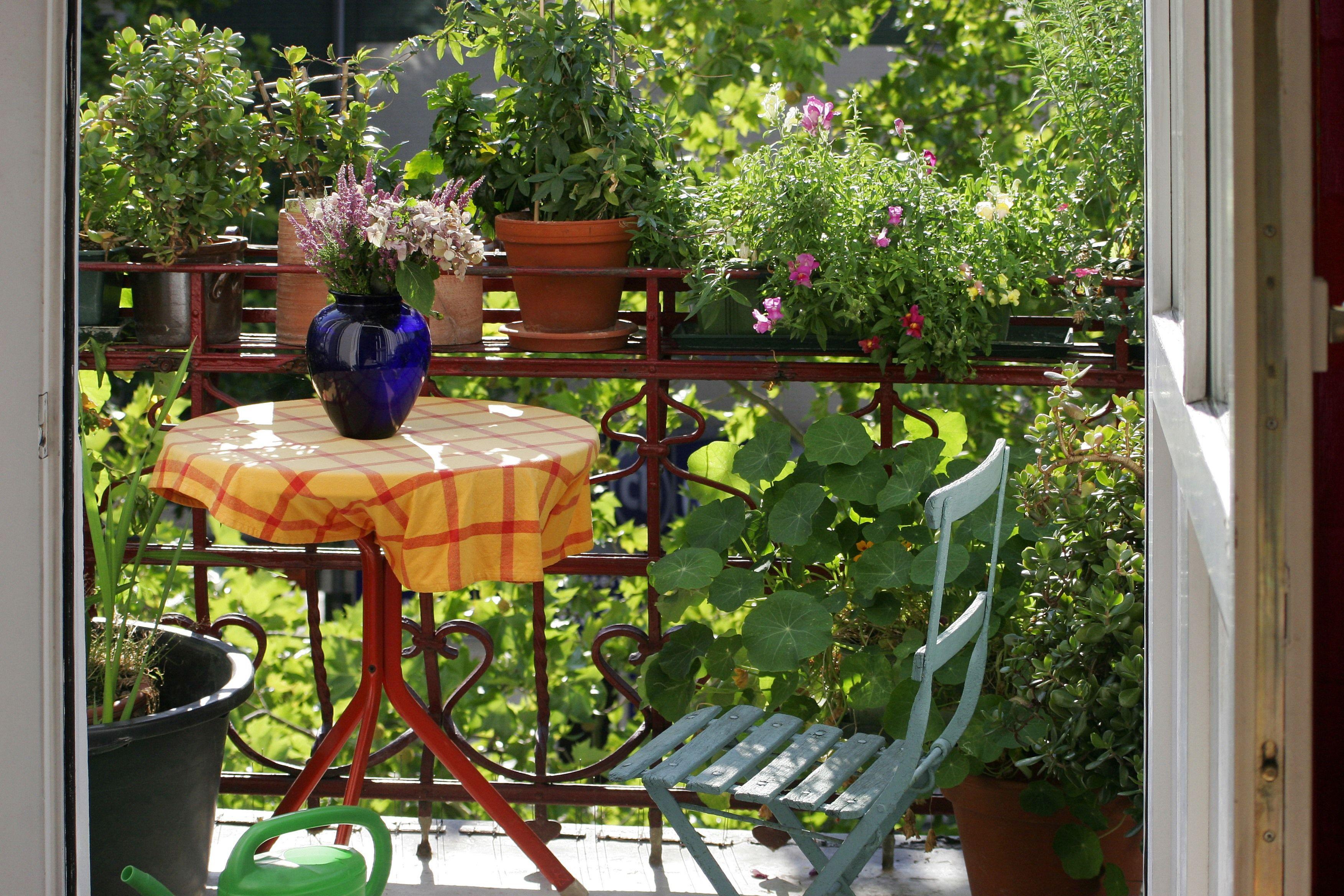 Decoration Petit Jardin destiné balcon : aménagement, décoration, balcon fleuri, en ville