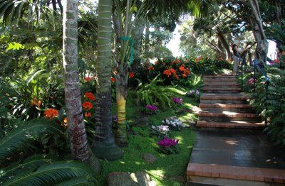 316e647fd8e1123cc8747ca47ca3ea5c - Self Realization Fellowship Meditation Gardens Encinitas