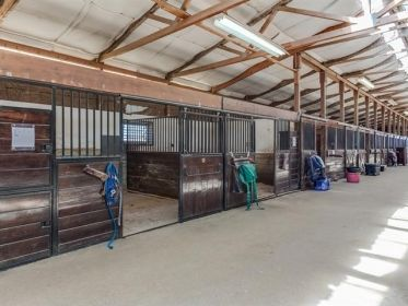 Own Your Own Equestrian Facility in Denver  State: Colorado County: ElbertCity: Elizabeth$1,250,000 0 sqft0 Bedrooms0 Bathrooms 40 Acres 26 ...