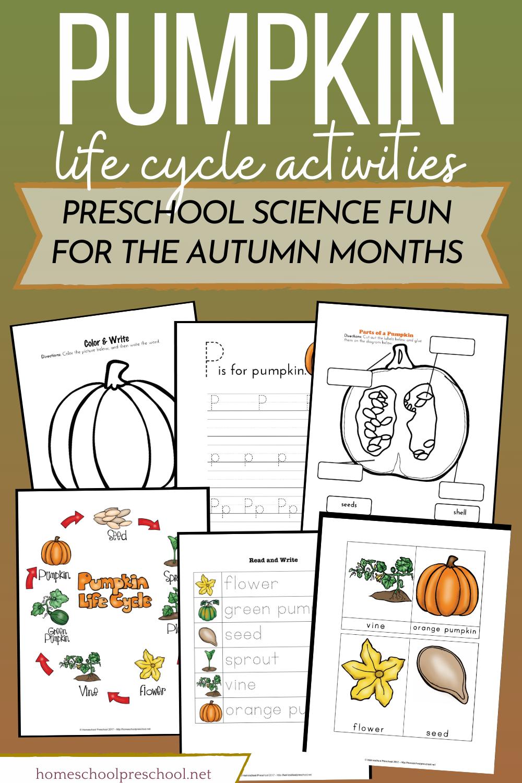 Preschool Life Cycle Of A Pumpkin Printable For Fall Life Cycles Pumpkin Life Cycle Life Cycles Activities [ 1500 x 1000 Pixel ]