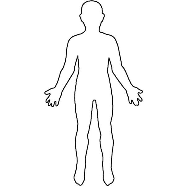 Outline Of A Human Body Search Results Brain Anatomy Liked On