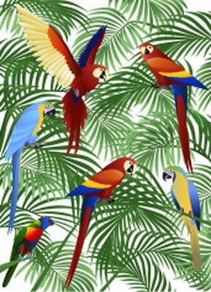 oiseau feuille perroquet exotique motif tissu tropical. Black Bedroom Furniture Sets. Home Design Ideas