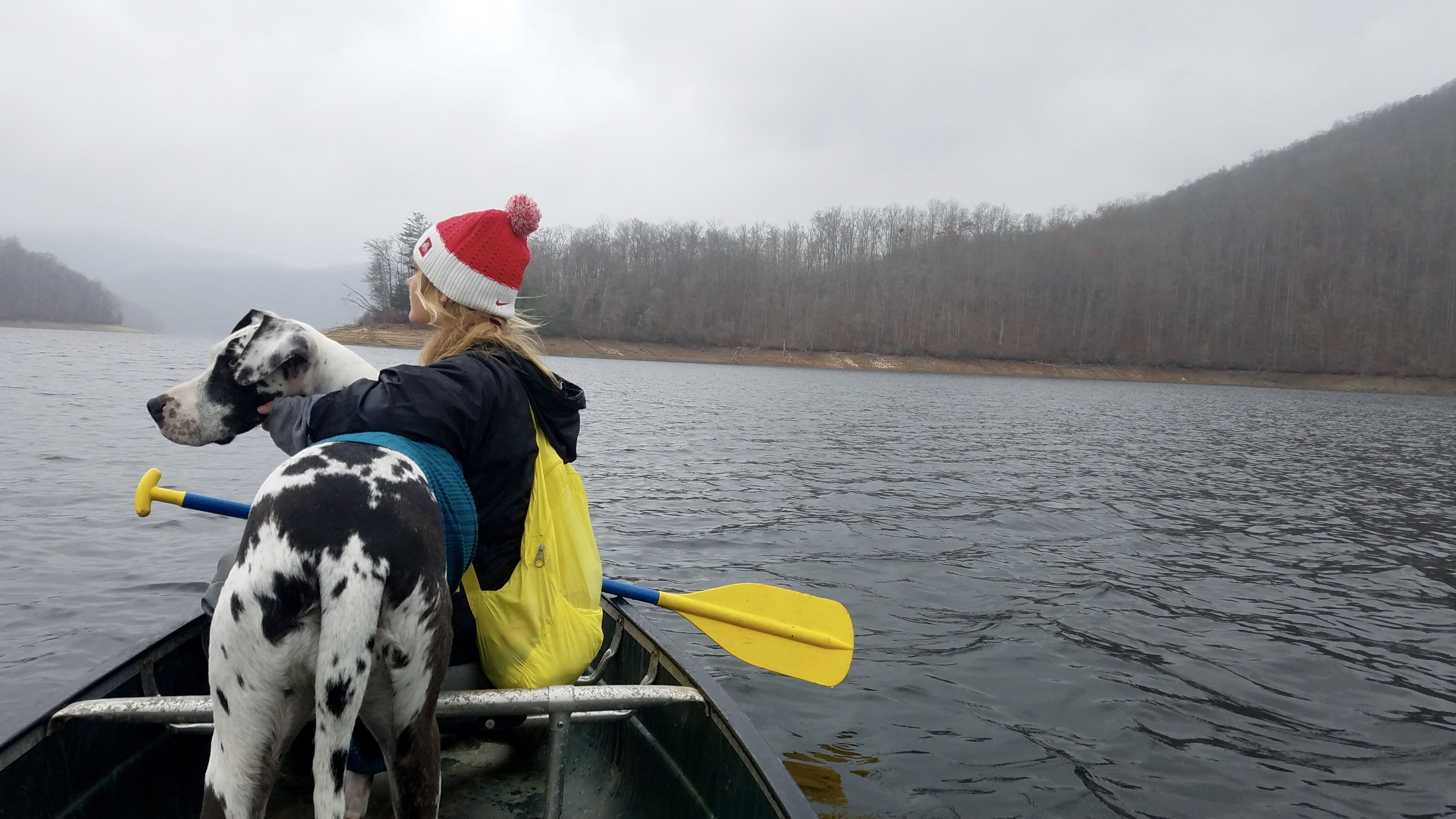 Great Dane Adventures Great Dane Canoeing Traveling With Dogs