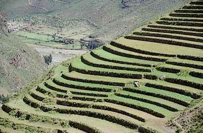 Agricultura Inca Aprenda Historia De La Humanidad Inca Imperio Incaico Curvas De Nivel